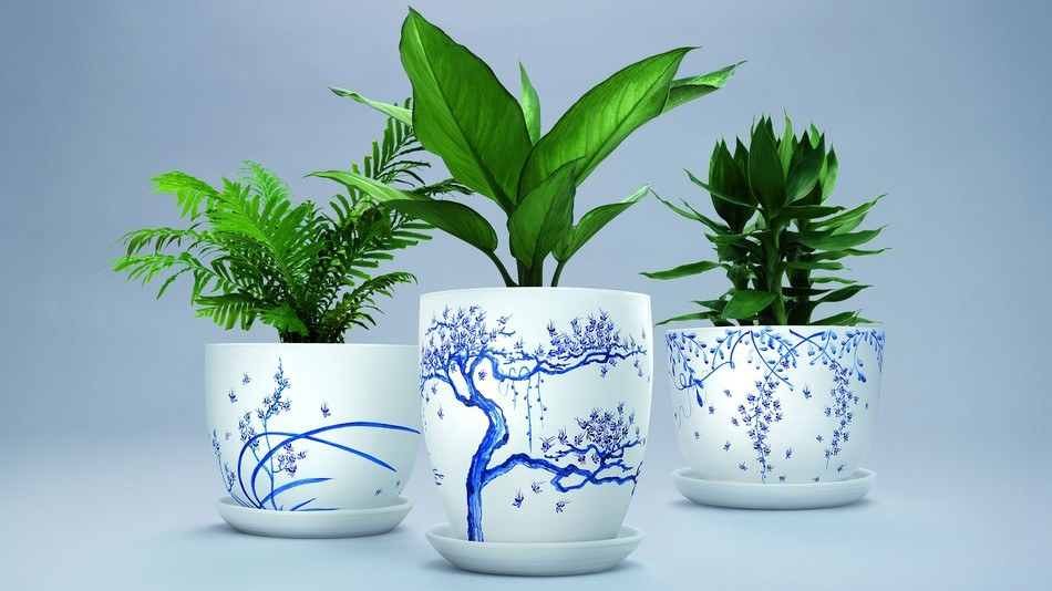 Plant pots made to repel mosquitos have one cool detail painted on them